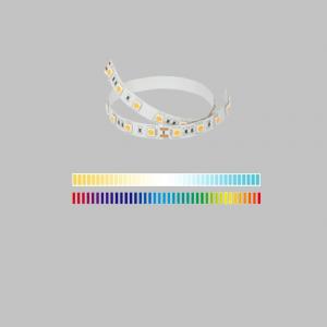 RGB-W+W